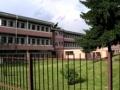 """Scuola primaria """"Renzo Pezzani"""""""